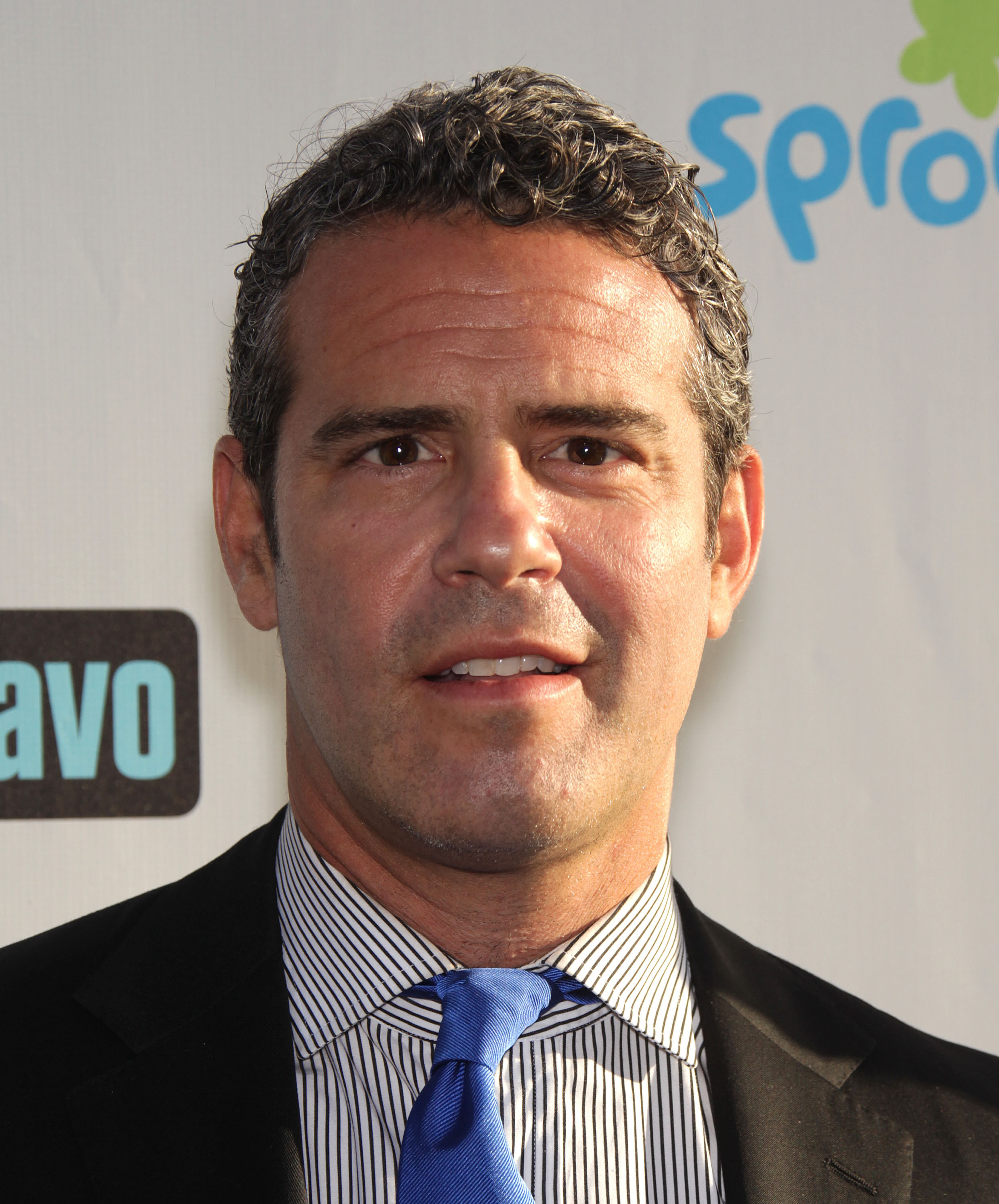 ANDY COHEN arriving to Summer 2011 TCA Party | Shutterstock