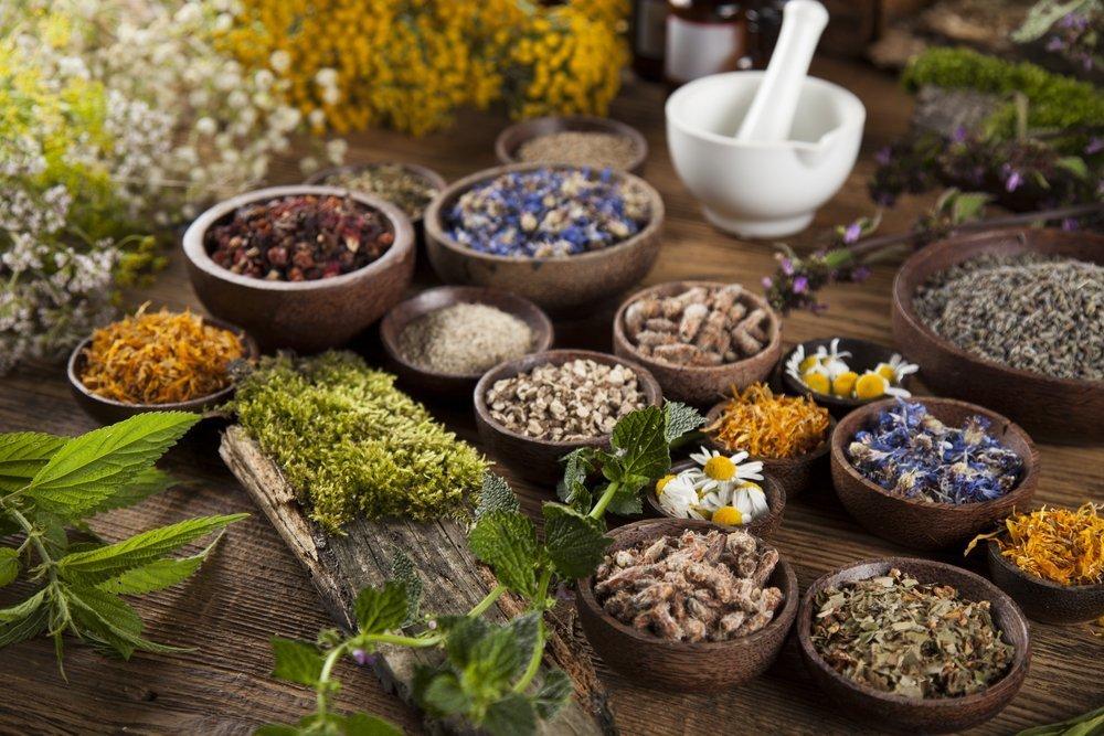 Kräuterschalen | Quelle: Shutterstock