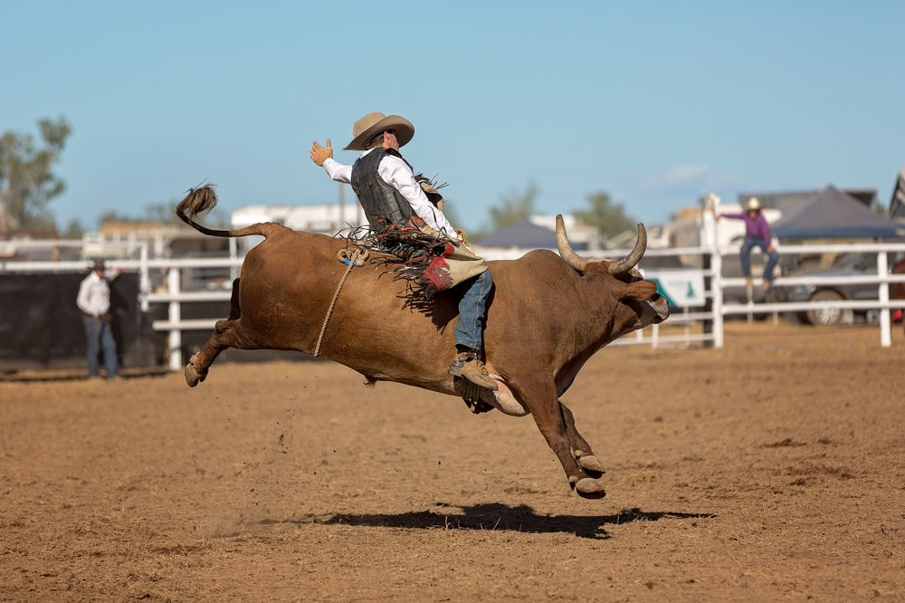 A cowboy competing in a bull-riding event at a country rodeo | Photo: Shutterstock/Jackson Stock Photography