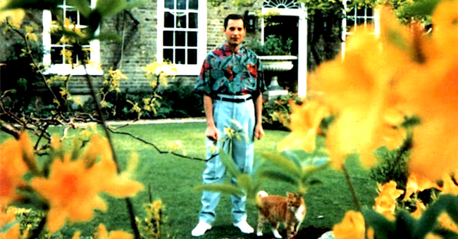 Freddie Mercury y la historia de amor tras sus dos últimas fotos antes de morir