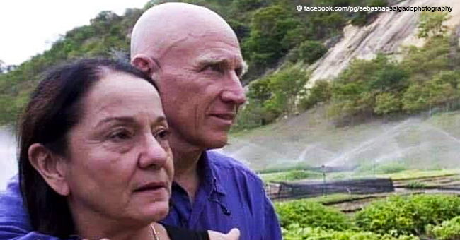 Brazilian Couple Plant a Whole Forest of Two Million Trees in Twenty Years