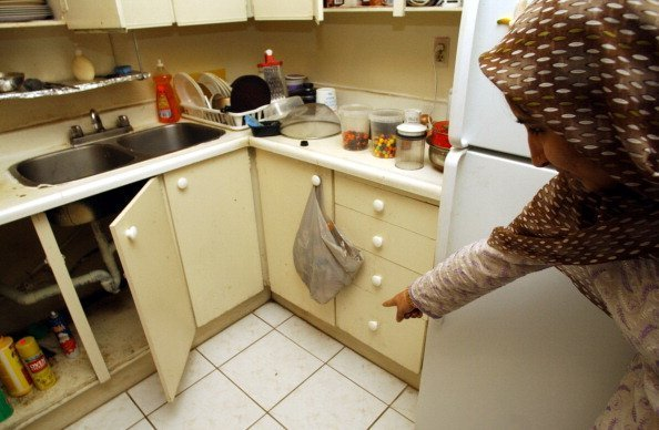 An elderly woman points out cockroaches surrying across the floor of her kitchen | Photo: Getty Images