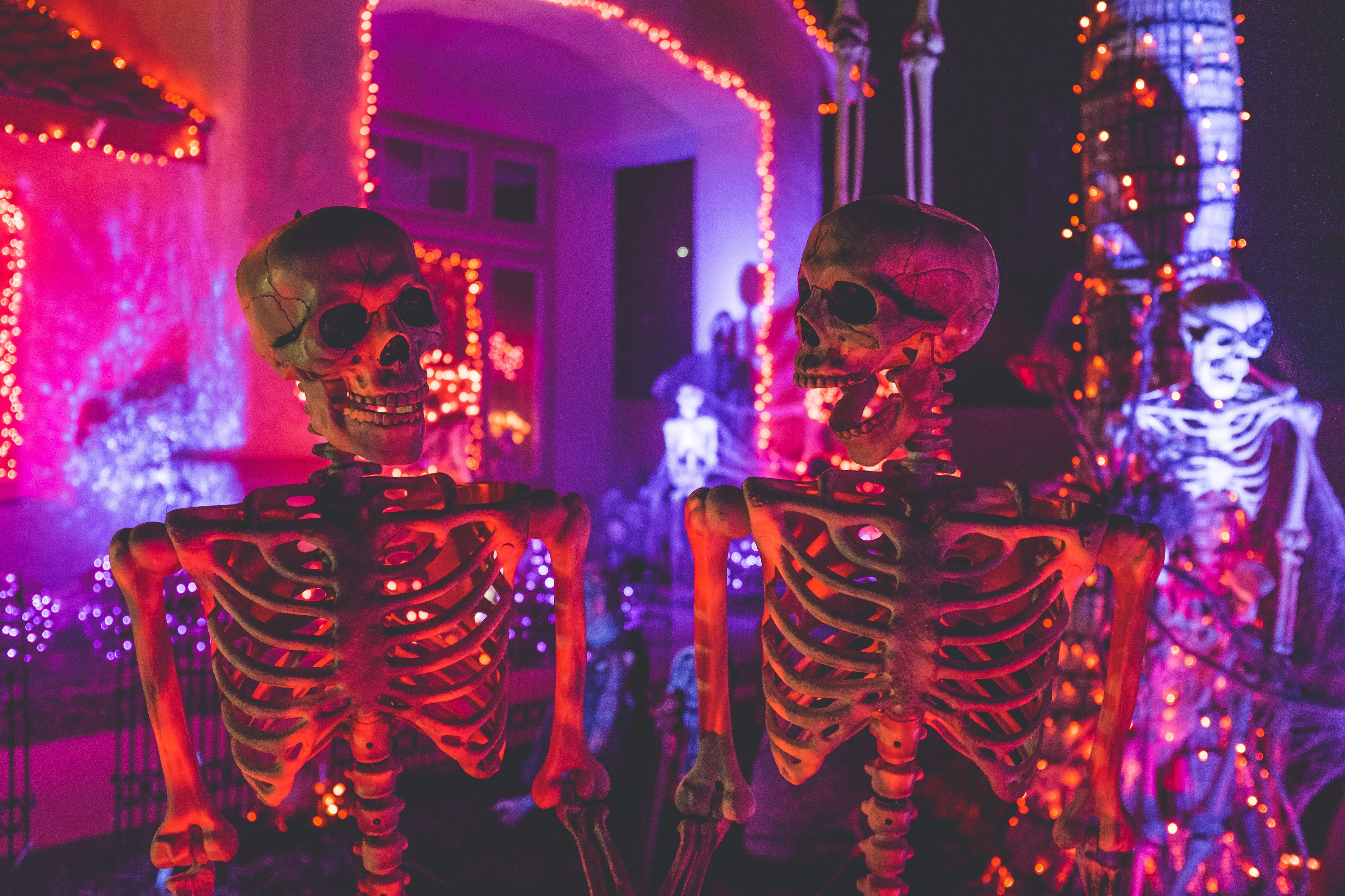 A stunning picture of Halloween decorations | Photo by NeONBRAND on Unsplash