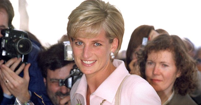 The Sun: Prince Harry Will Join Prince William to Approve the Design of Princess Diana's Statue
