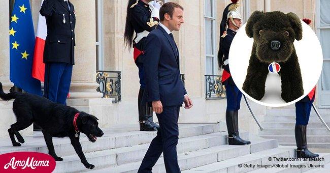 L'Elysée satisfait les fans de Emmanuel Macron, offrant à tout le monde d'obtenir une copie de Nemo pour 99 euros