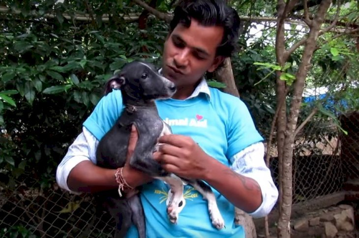 Source: Youtube/Animal Aid Unlimited, India