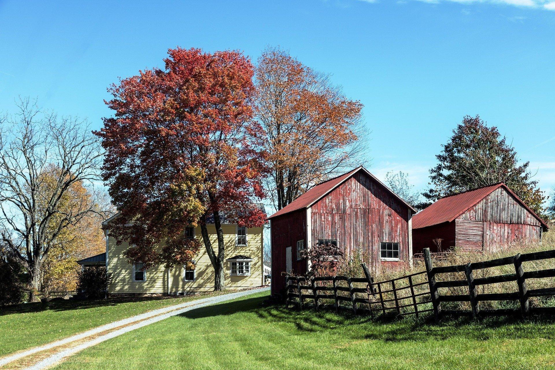Une ferme à la campagne. | Photo : Falkenpost/Pixabay