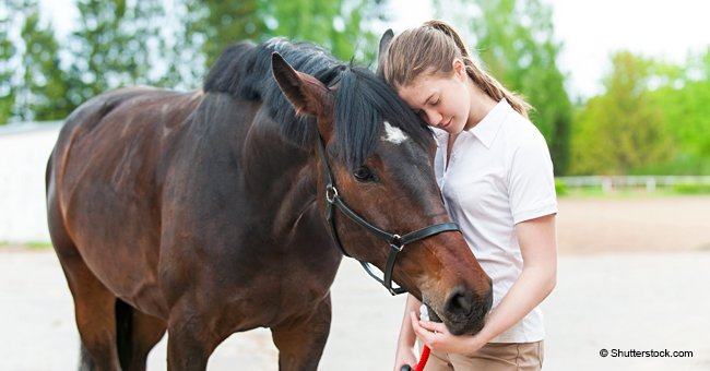 Girl pens tearful farewell to her horse who died of sugar overdose because of soulless burglars