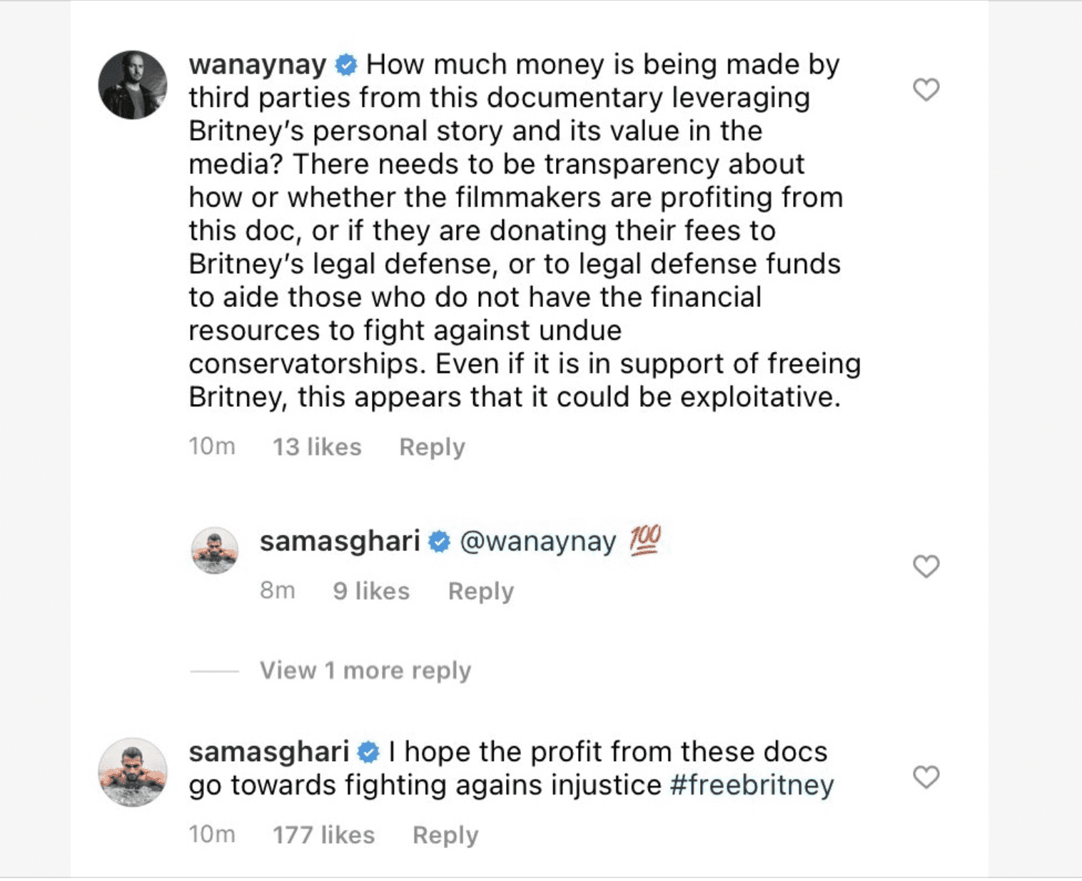 Comments made by Bobby Campbell and Britney fans on the Netflix documentary announcement post on Instagram   Photo: Instagram @netflix