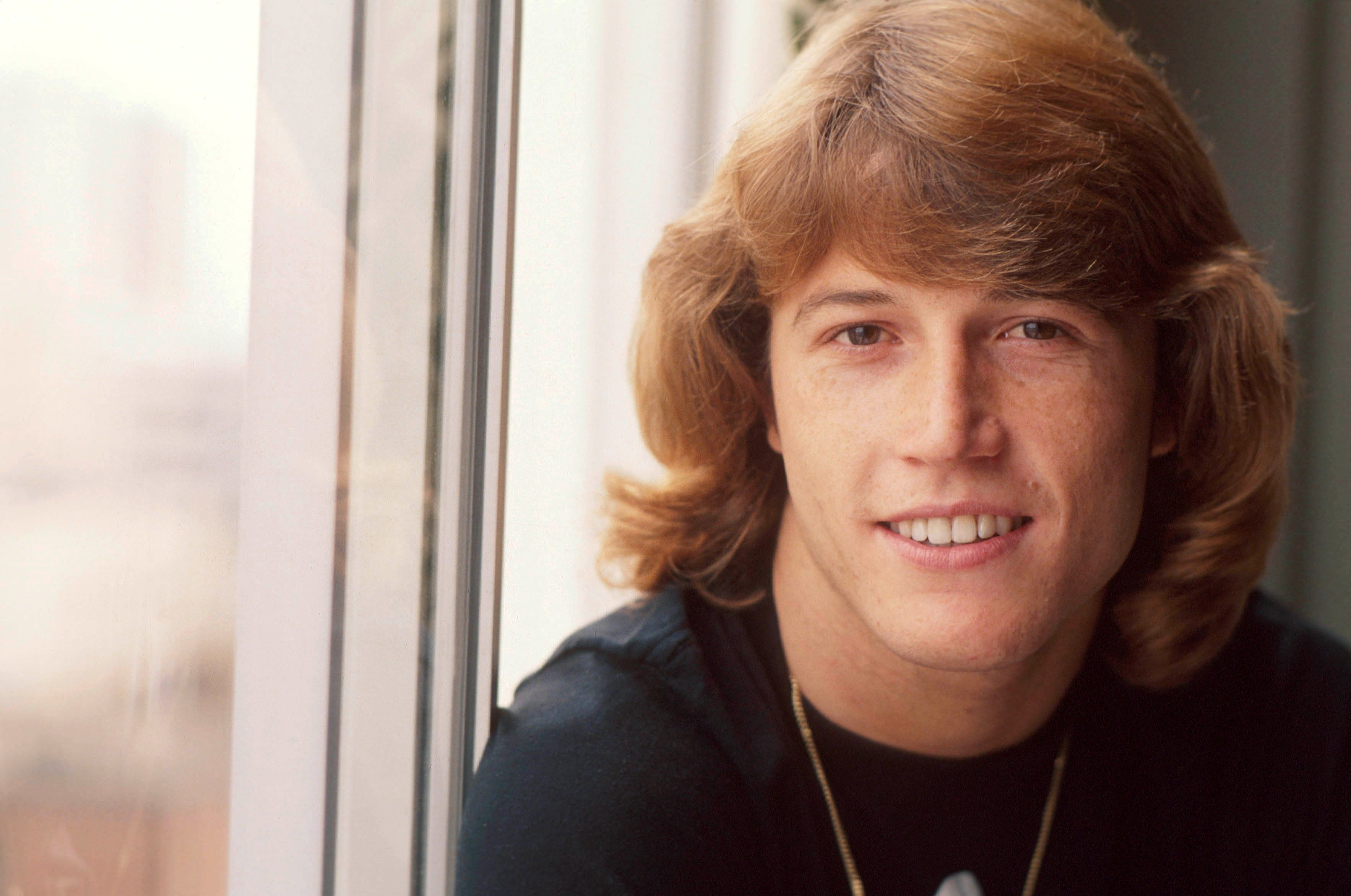 Andy Gibb, portrait, USA, 1978.   Source: Getty Images