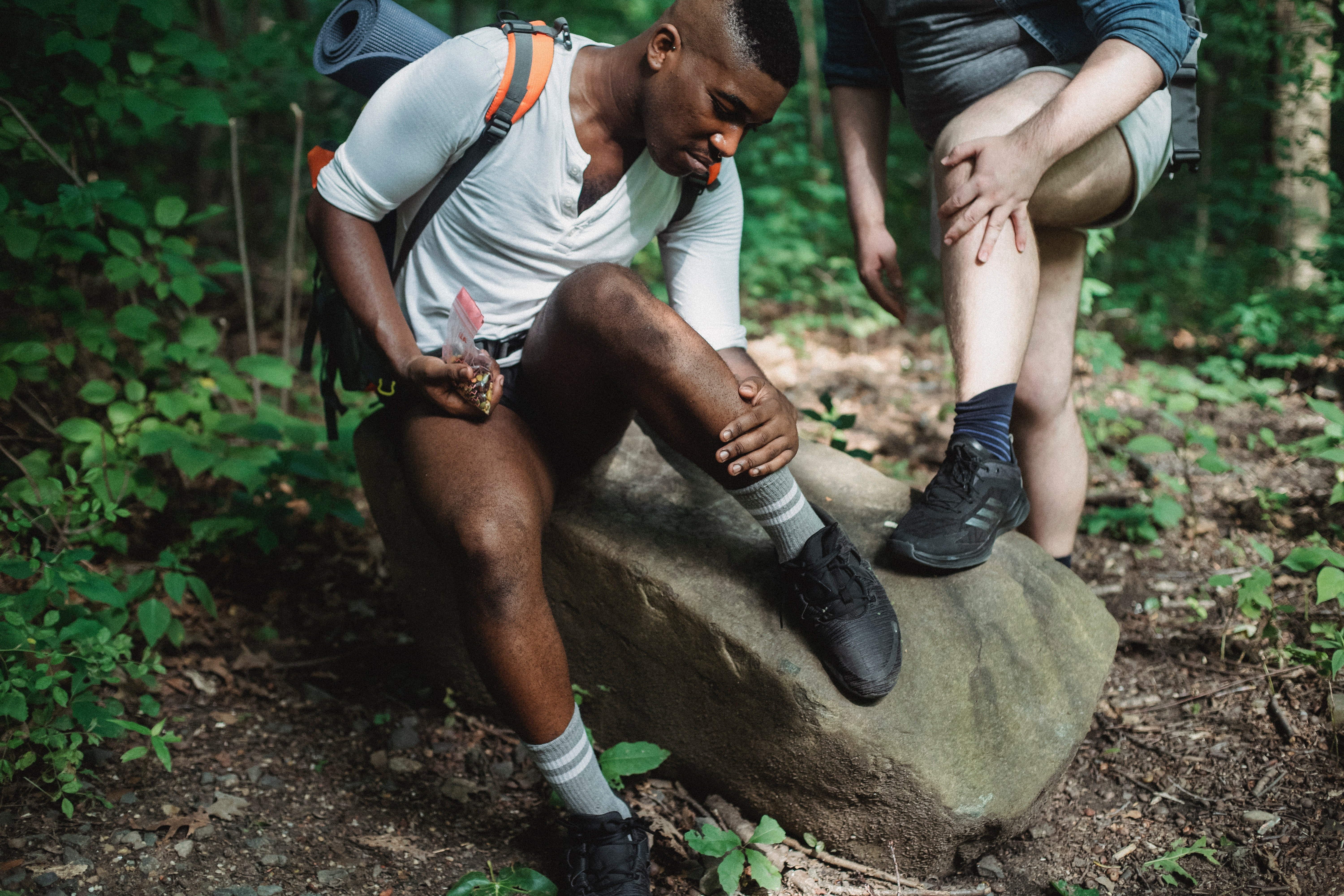 Pictured - Two males checking acari during hike in the forest | Source: Pexels
