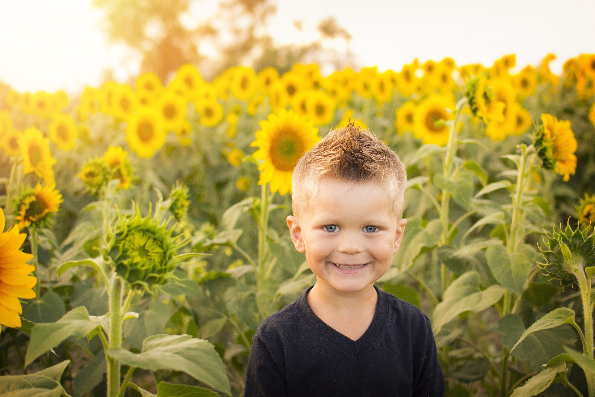 Mischievous little boy in a field of sunflowers. | Source: Pixabay