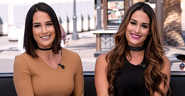 Pregnant Nikki and Brie Bella Want to Film Their Births for 'Total Bellas' Amid Pandemic