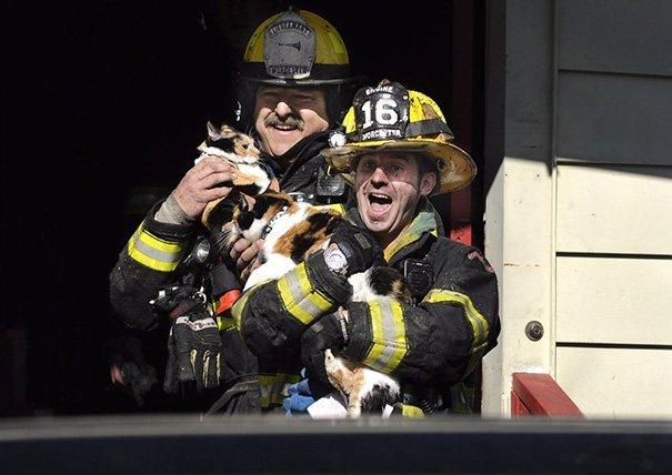 Des pompiers sauvant une vie.   Image : Chiefworcester / Twitter