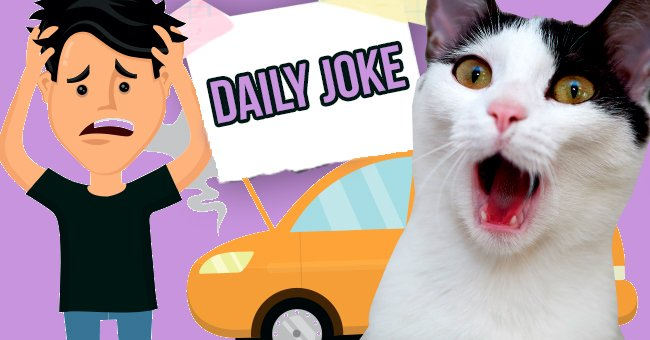 Daily Joke: Man Decides to Get Rid Of Wife's Cat Whom He Hates