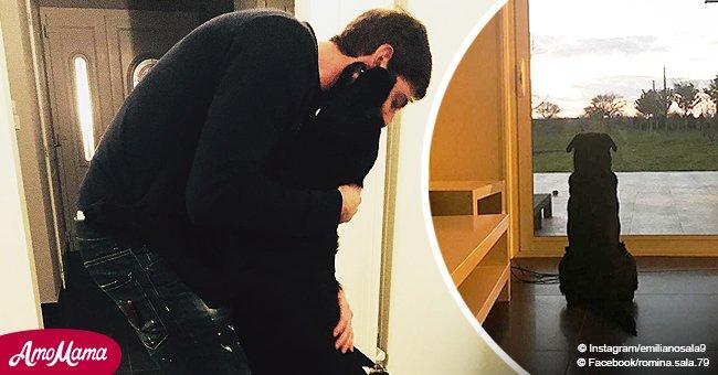 Disparition d'Emiliano Sala : son fidèle chien attend patiemment son propriétaire (photo)