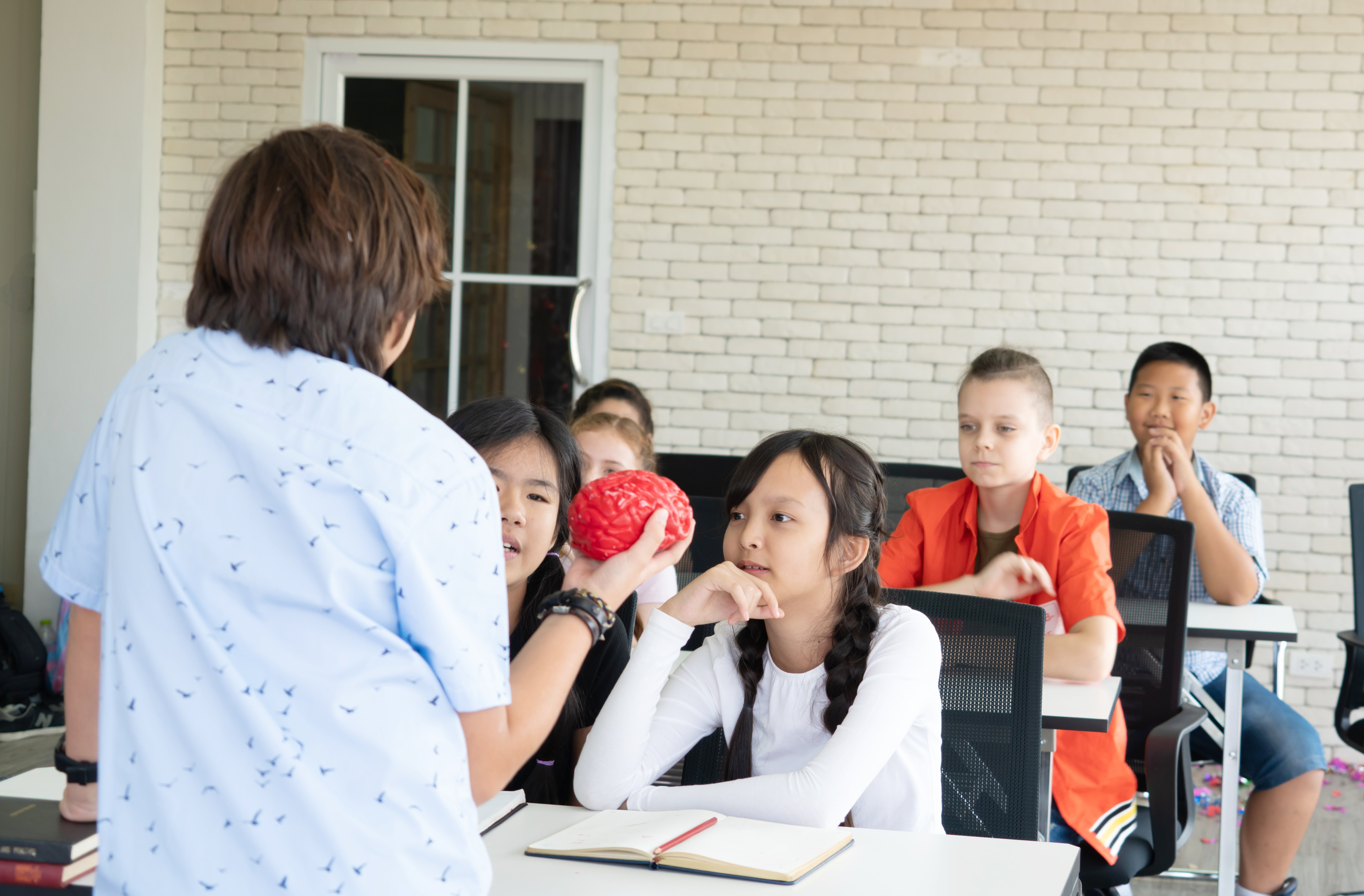 A boy presents himself in front of the classroom, in a primary school   Photo: Shutterstock