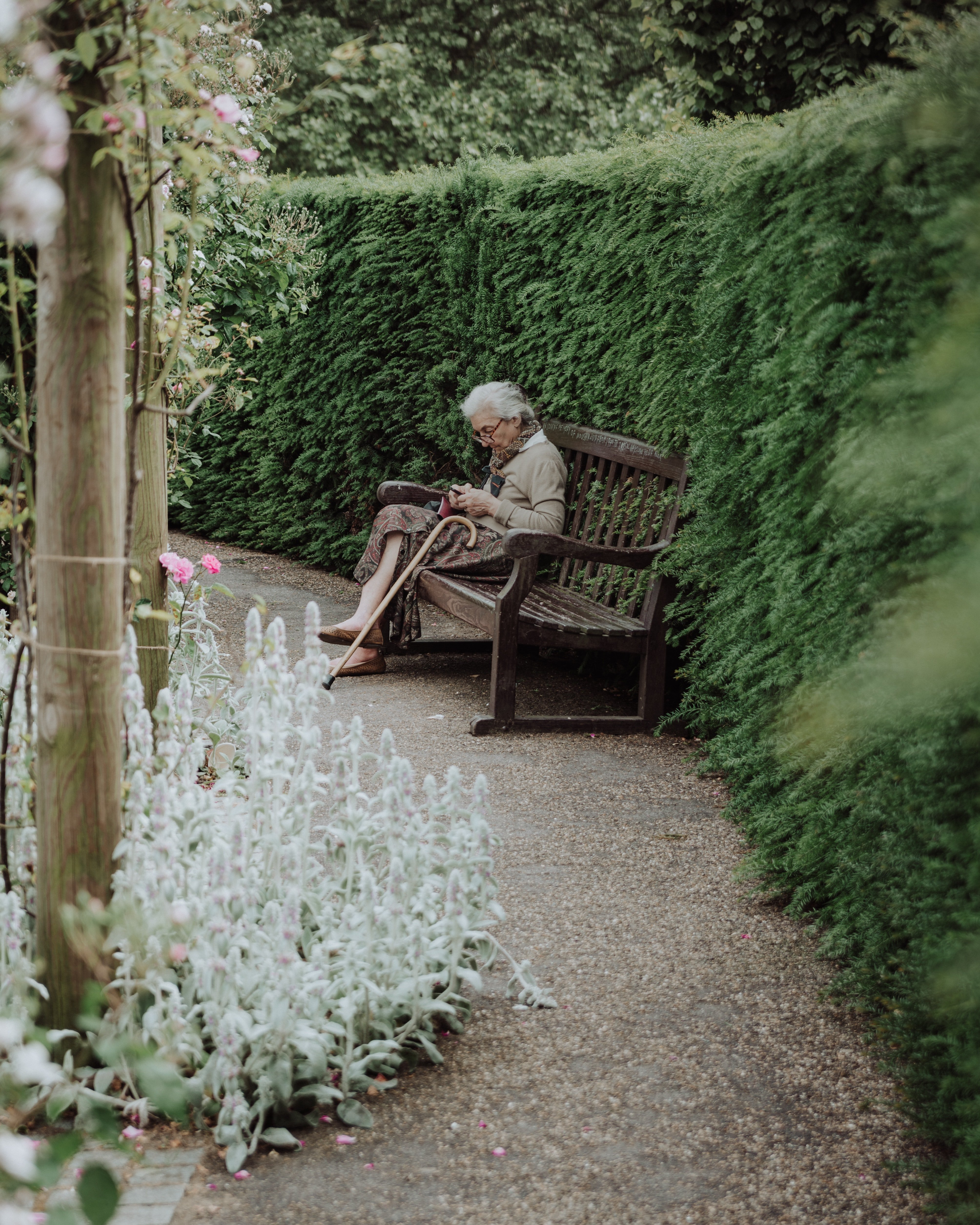 John was glad to find Claire safe and well in her little garden | Source: Pexels