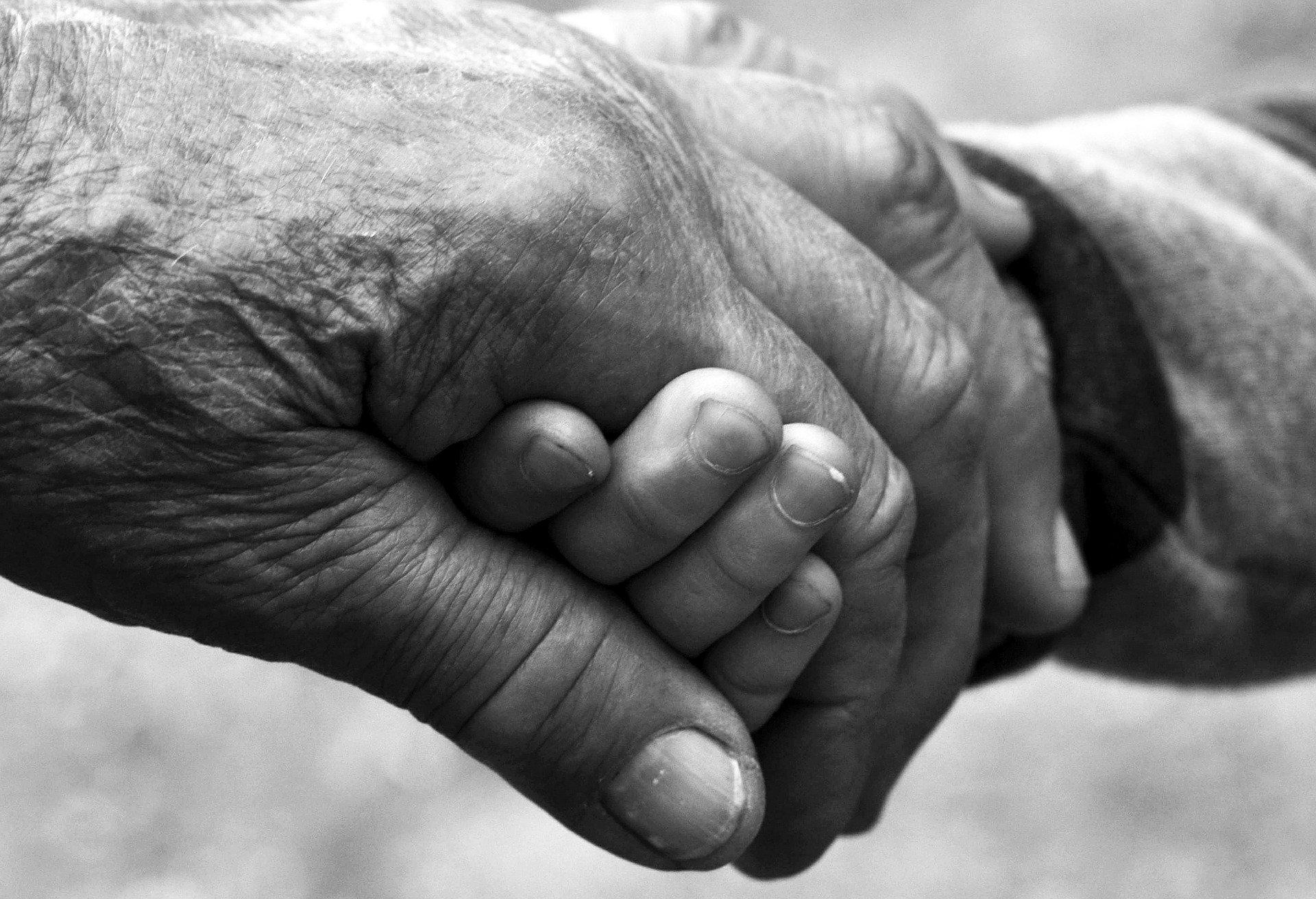 Abuela sostiene mano de nieto. Fuente: Pixabay