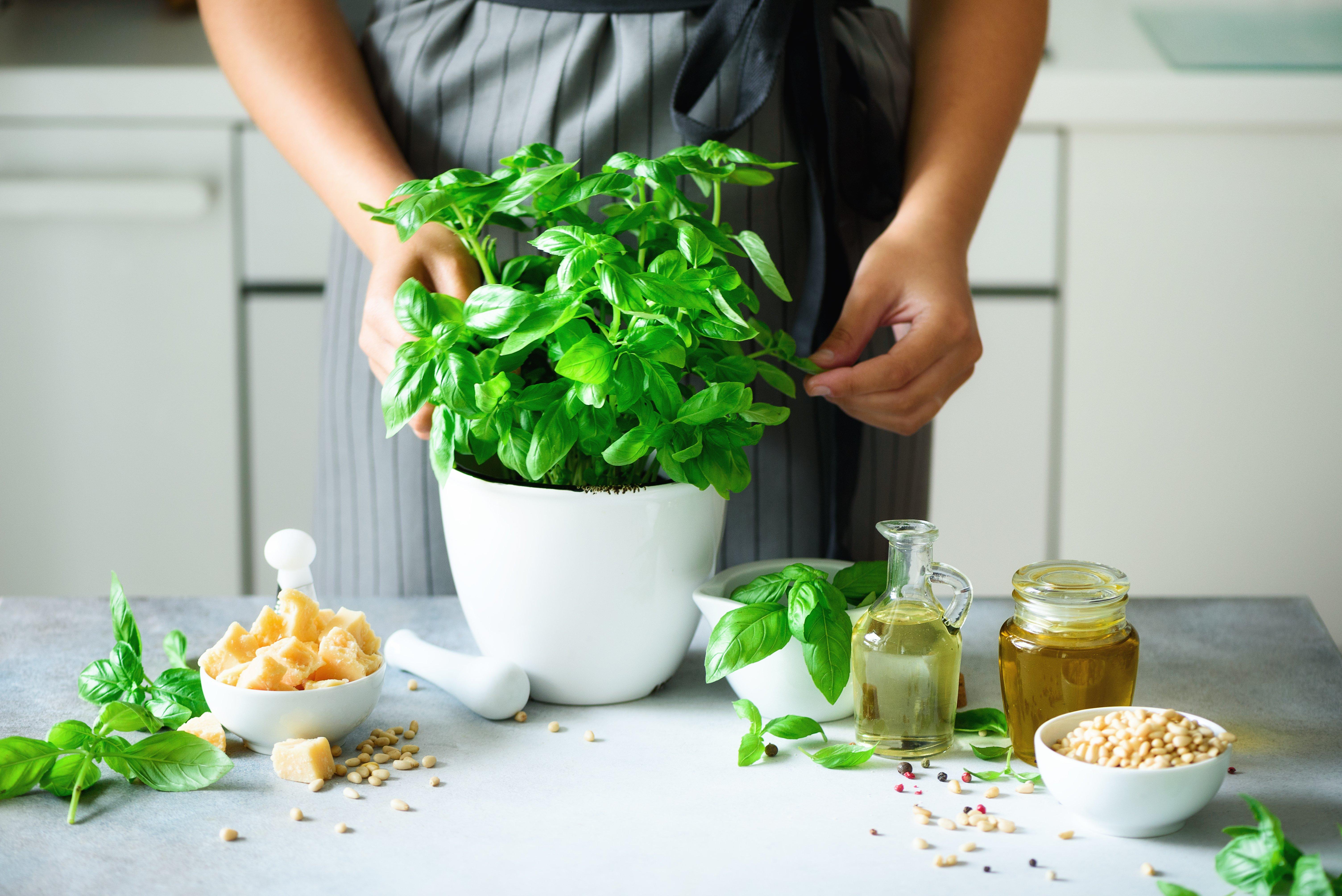 Une femme prépare des feuilles de basilic | Photo : Shutterstock
