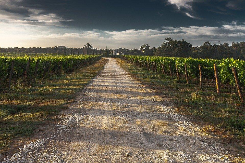 Poblado rural│ Imagen tomada de: Pixabay