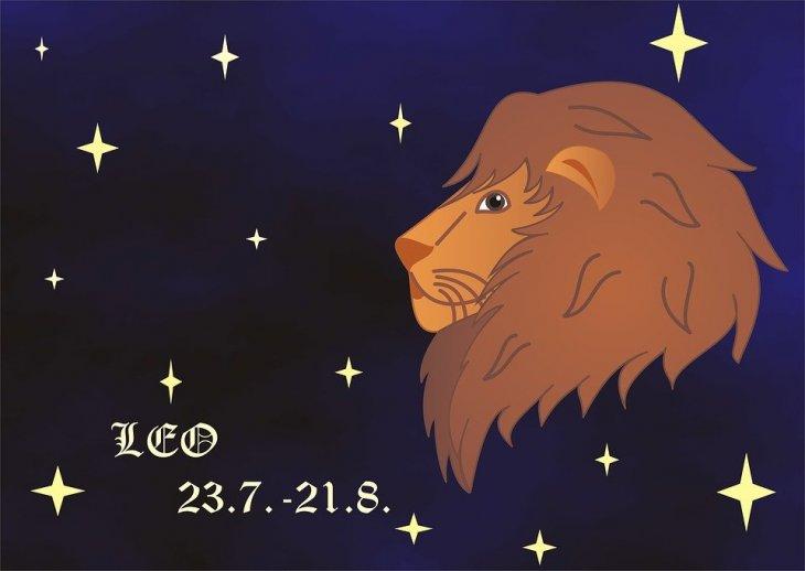 Signo de Leo. | Imagen tomada de: Max Pixel