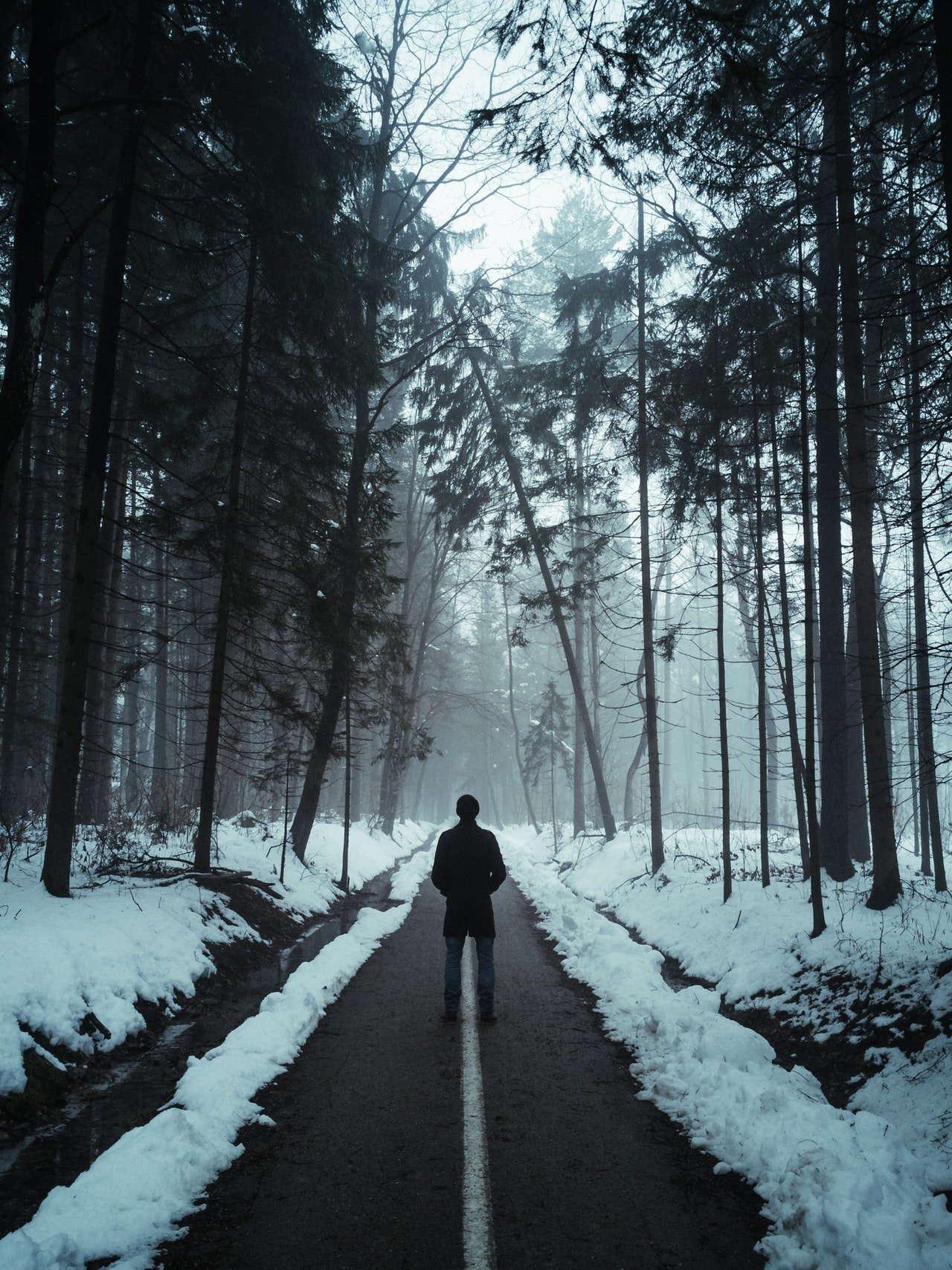 Photo of a man standing in the woods during winter   Photo: Pexels