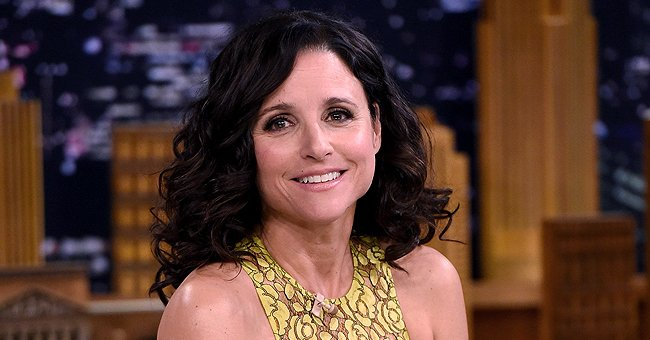 Julia Louis-Dreyfus of 'Seinfeld' Opens up about Battle with Cancer in a Candid Interview