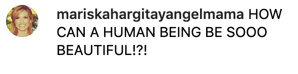 Fan comment on Mariska Hargitay's photo. | Source: Instagram/therealmariskahargitay