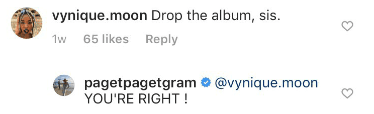 A fan asking her to release an album | Instagram: pagetpagetgram
