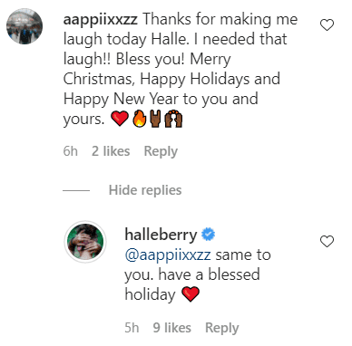 A fan's comment and Halle Berry's reply on her post of elves on the shelf | Photo: Instagram/Halleberry