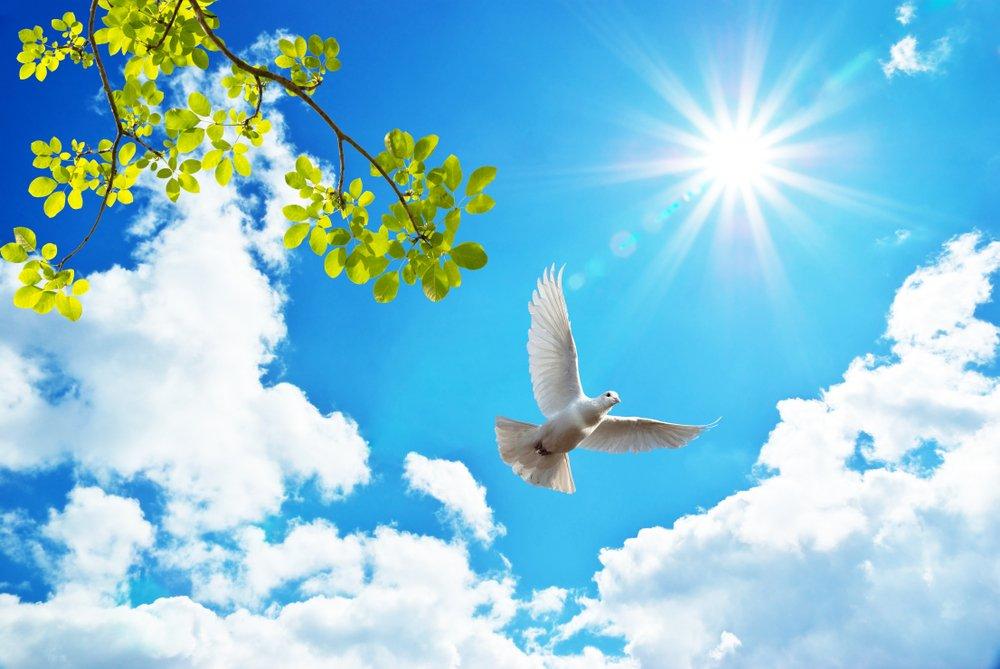 Un message du ciel. | Photo : Shutterstock