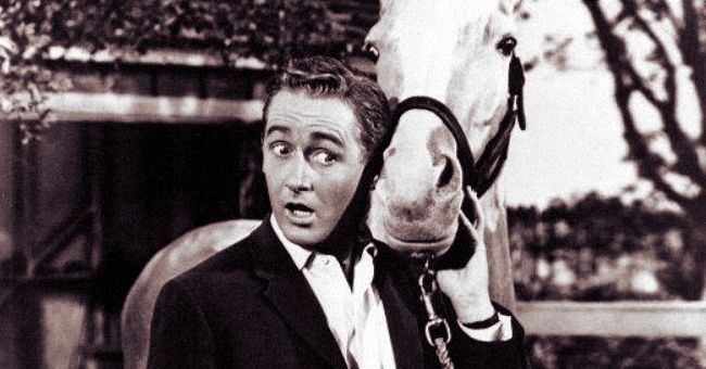 Alan Young's Life Before, during and after 'Mister Ed'