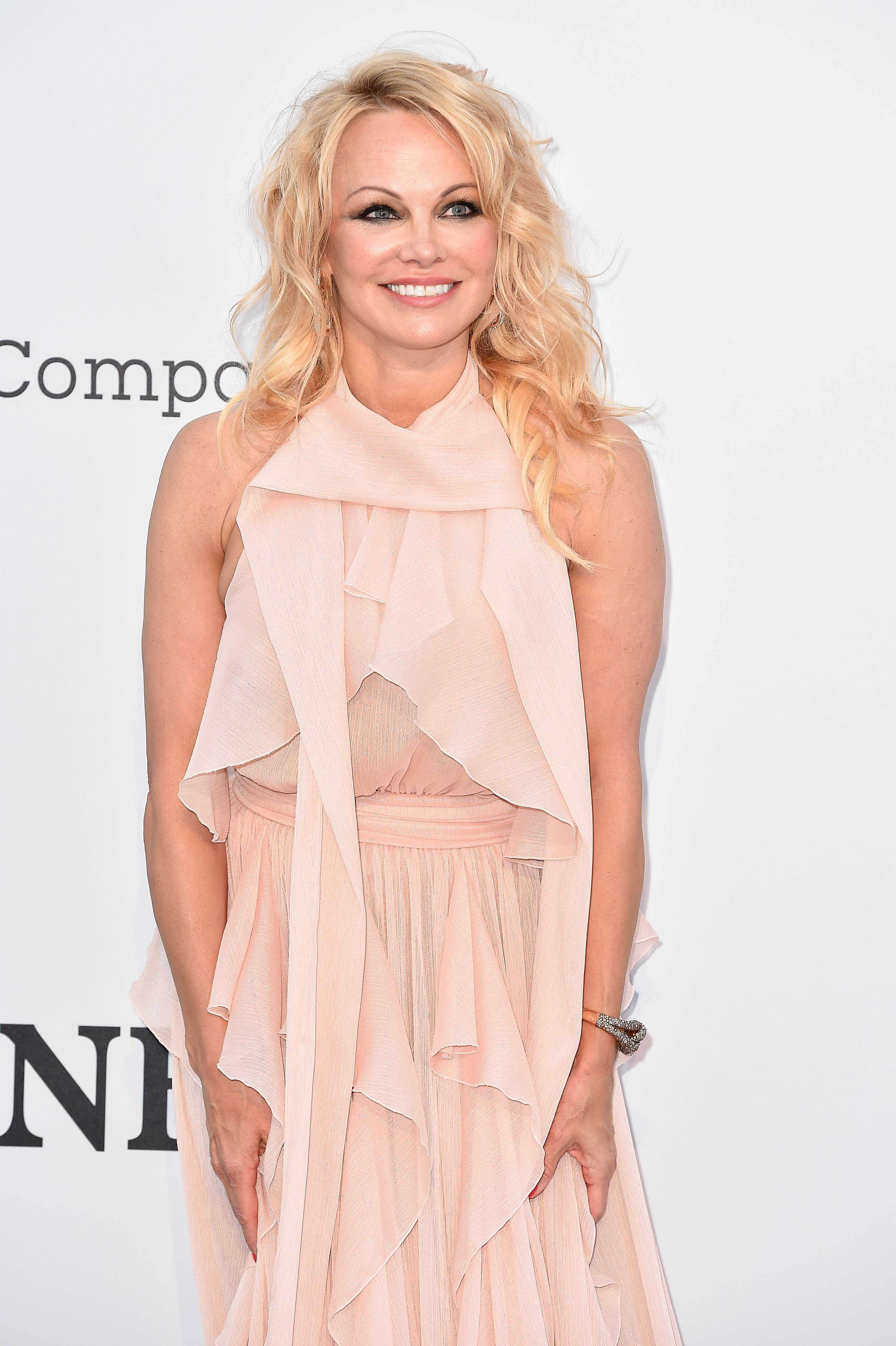 Pamela Anderson at the amfAR gala   Photo: Getty Images