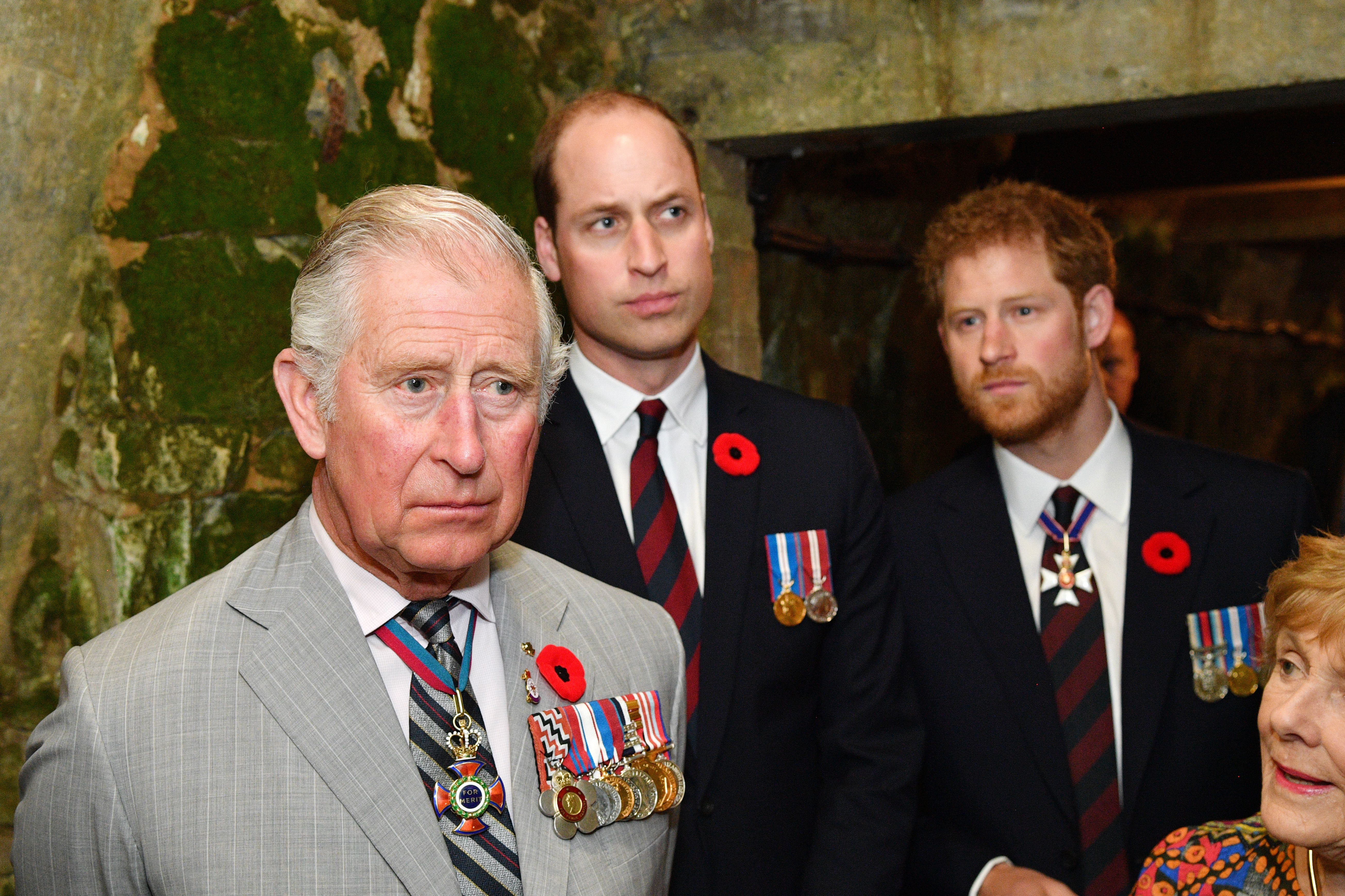 Prince Charles, Prince William and Prince Harry pictured at the tunnel and trenches at Vimy Memorial Park, 2009, Vimy, France. | Photo: Getty Images