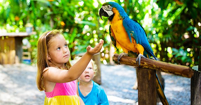 Two kids and a parrot at the zoo. | Photo: Shutterstock