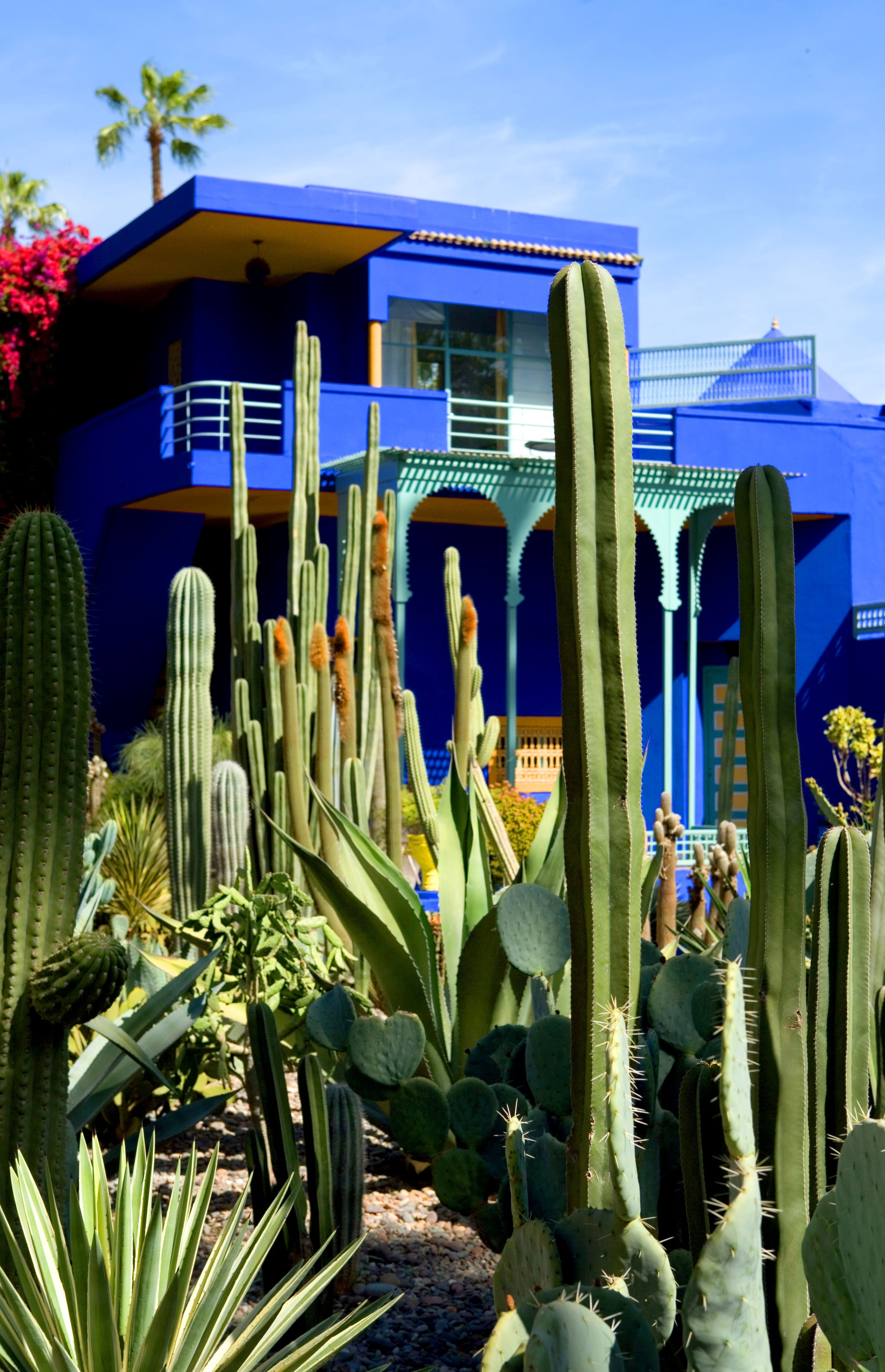 La villa Majorelle du couturier Yves Saint Laurent à Marrakech | Photo : Getty Images