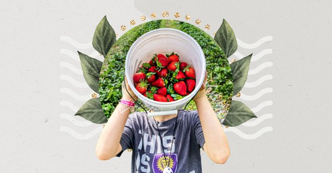 A Guide To Eating Sustainably On A Budget