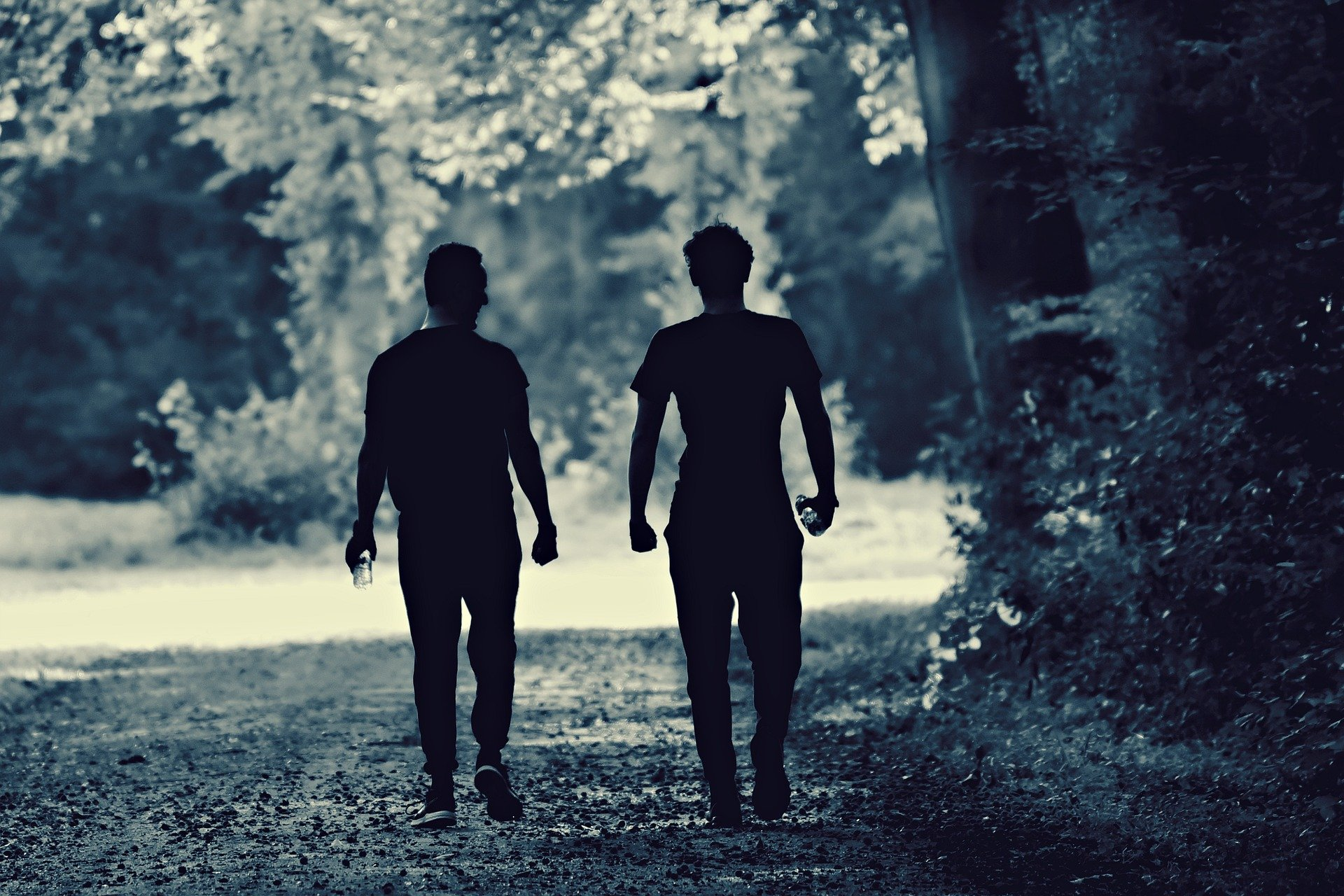 Two men walking on a nature trail. | Source: Pixabay.