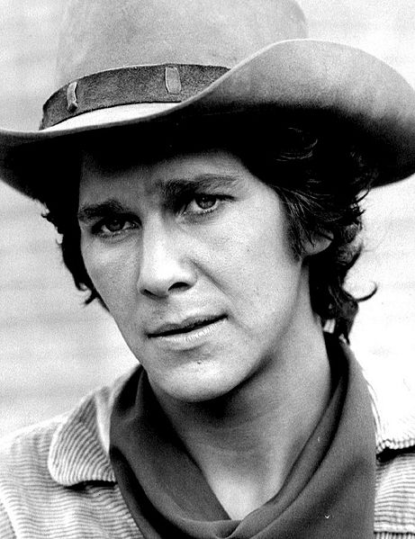Tim Matheson as Griff King, 1972. | Source: Wikimedia Commons