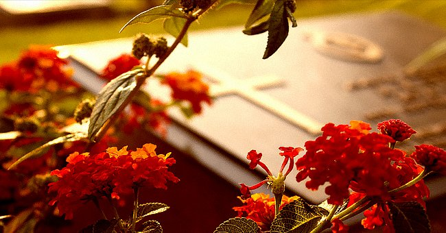Red flowers with a footstone in the background. | Source: Shutterstock