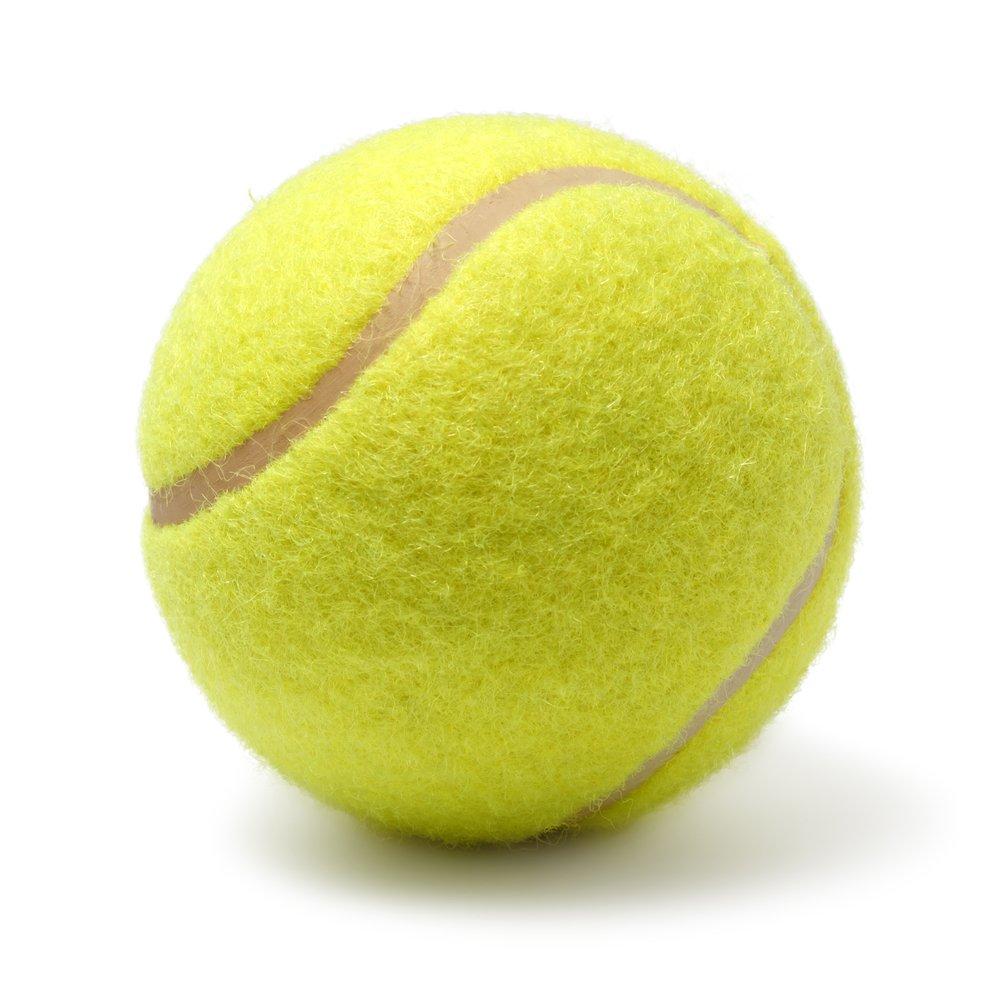 Une balle de tennis. l Source: Shutterstock