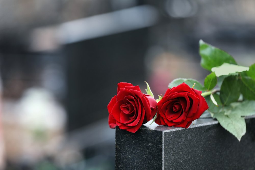 Red roses resting on a gravestone during a funeral | Photo: Shutterstock