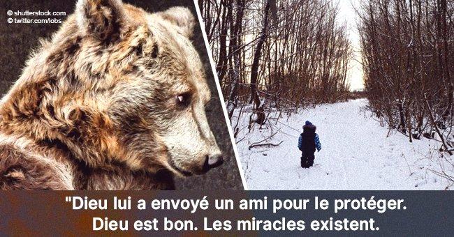 'J'ai été aidé par un ours': Le petit garçon de 3 ans perdu dans les bois pendant deux jours a été retrouvé
