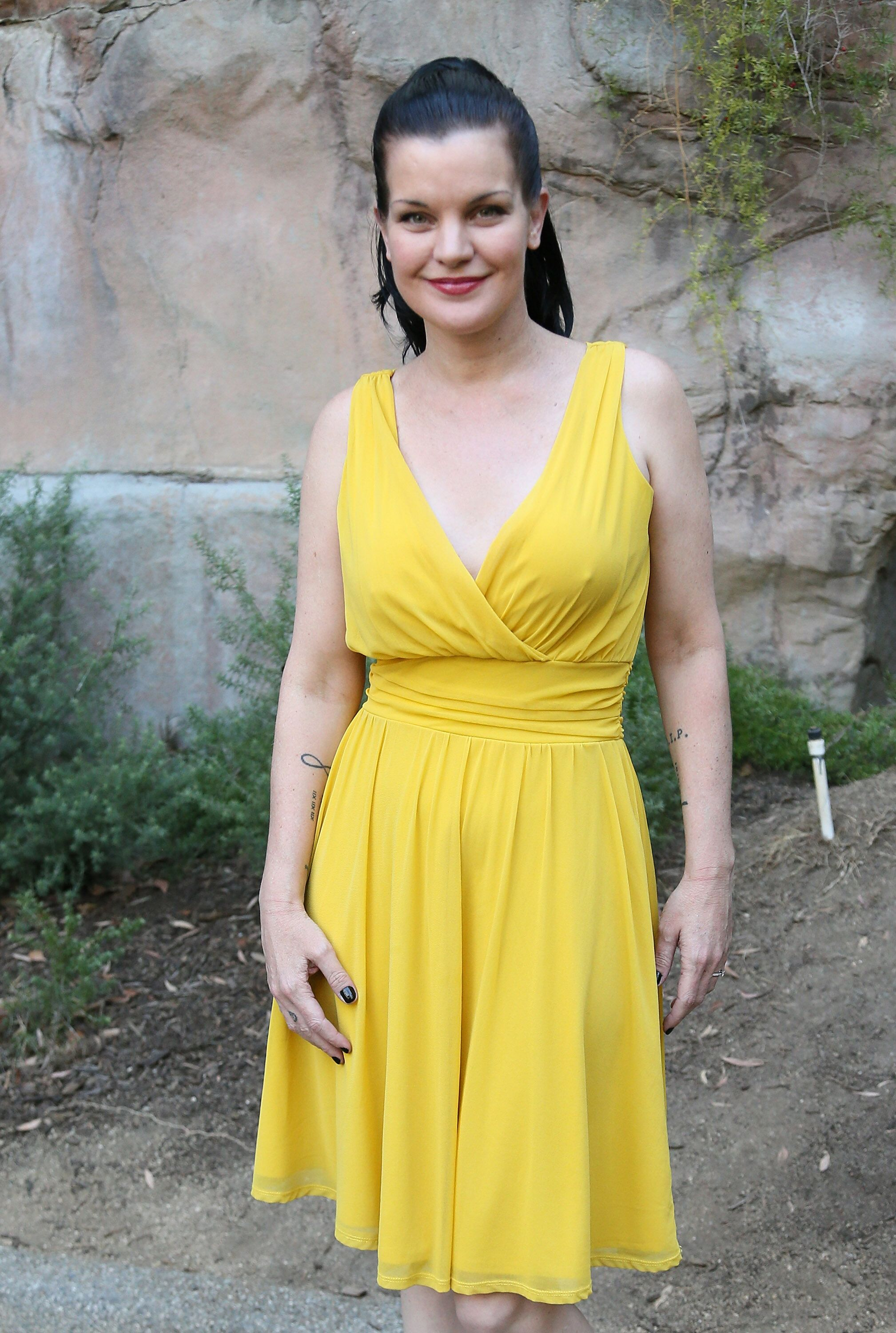 Pauley Perrette at the Greater Los Angeles Zoo Association's (GLAZA) 45th Annual Beastly Ball on June 20, 2015, in Los Angeles, California | Photo: David Livingston/Getty Images