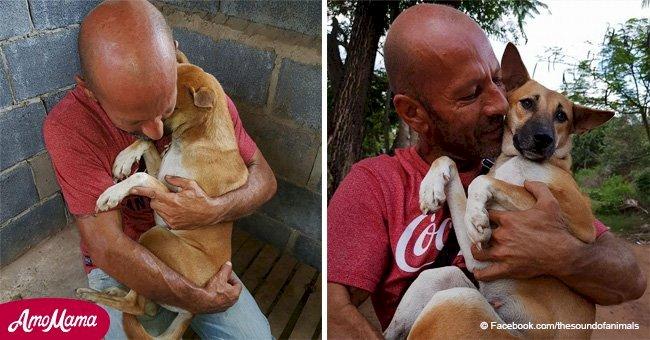 Un chien n'arrête pas de faire des câlins à l'homme qui l'a sauvé de l'abattoir