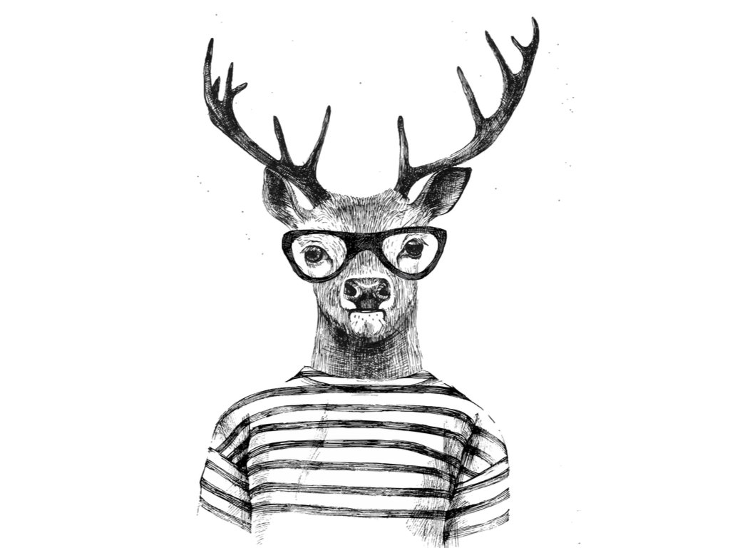 A photo of a deer wearing glasses | Photo: Shutterstock