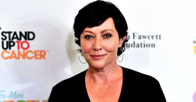 Brian Austin Green Shows Support for 'Beverly Hills, 90210' Costar Shannen Doherty Amid Her Second Cancer Battle