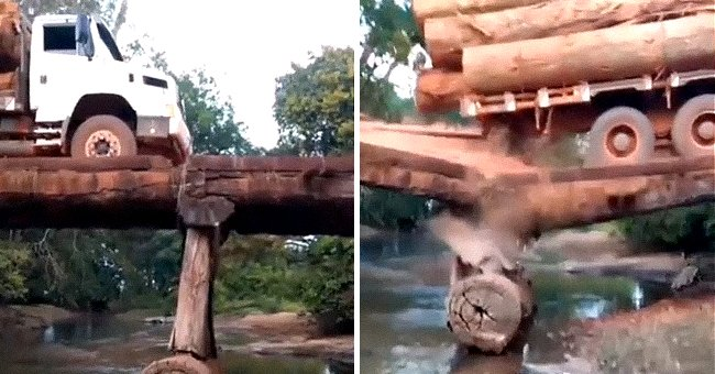 Alleged Timber Trafficking Truck Collapses on Wooden Bridge