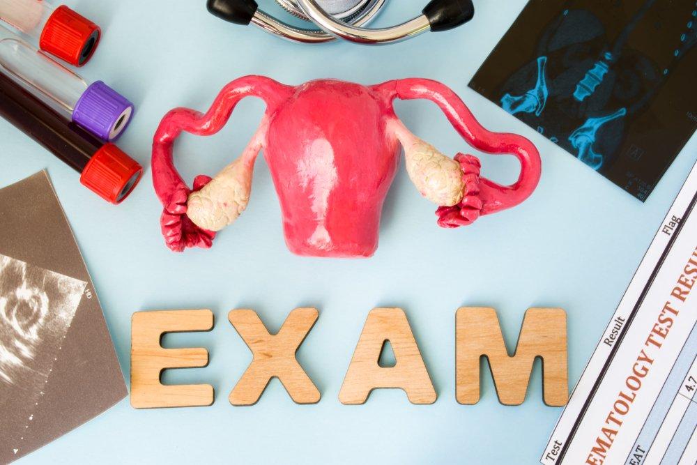 Modèle d'examen d'organes reproducteurs féminins entouré de tests de laboratoire, d'équipement médicaux et de résultats d'examens.   Shutterstock